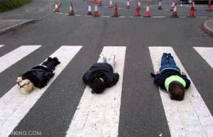 Abbey-Road_plank7